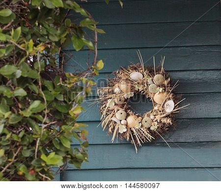 Seashell, starfish, heather and urchin wreath on a blue wooden door background