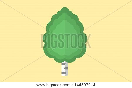 Russian flat green birch on yellow background
