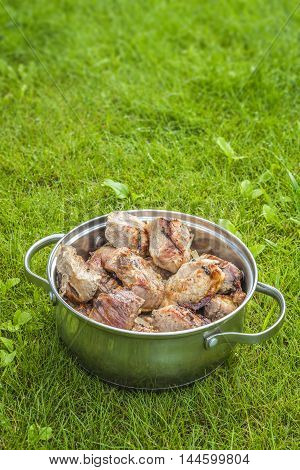 Ready-fried meat in barbecue is in a saucepan on a green lawn.