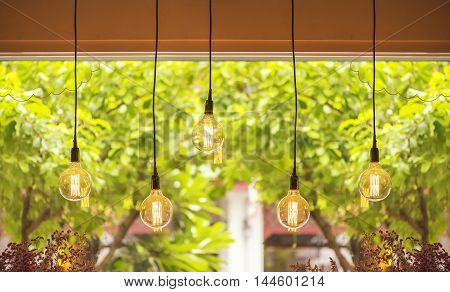Warm tone light bulb lamps hang against day light out side the window.