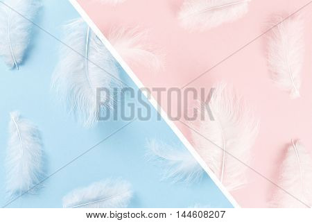 Trendy pastel colors. Soft, fluffy white feathers on pastel background. Minimalism pattern