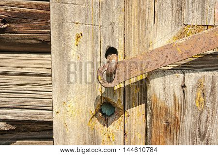 old wooden brown closed door on summers day closeup