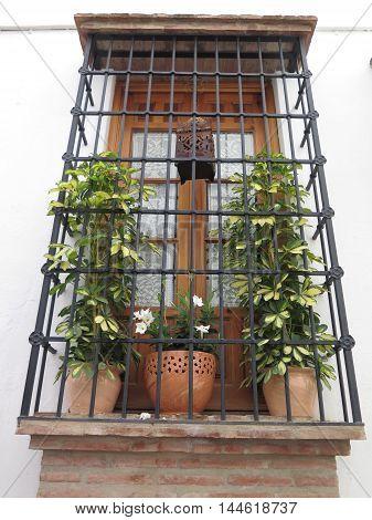 Widow with bars plants and arabic lantern