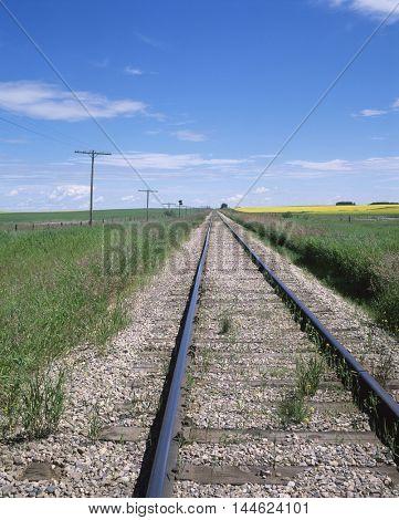 Railroad tracks on a farm