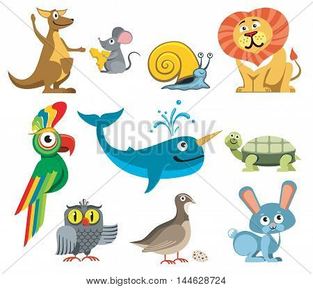 Cute animals vector set in cartoon style. Turtle and snail, kangaroos and parrot illustration
