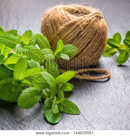 Beautiful Bunch Fresh Green Mint Tied Twine And Yarn On Black Slate Background, Close Up