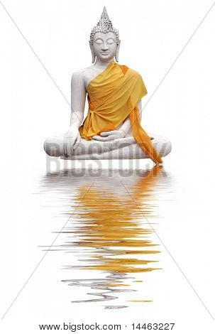 Buddha with reflection