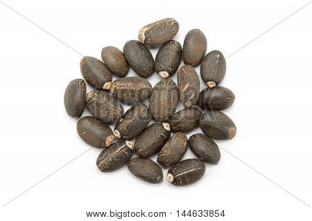 Organic Barbados nut (Jatropha curcas) seeds. Isolated on white background. Top view.