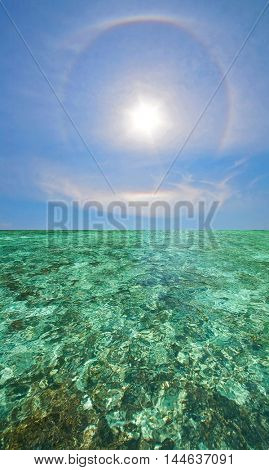 Coral Scape at PhiPhi Island with Perfect Sky