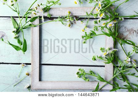 Retro frame with chamomile on wooden background, top view