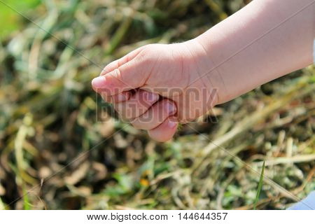 baby hand closeup on green backround. child squeezes fist