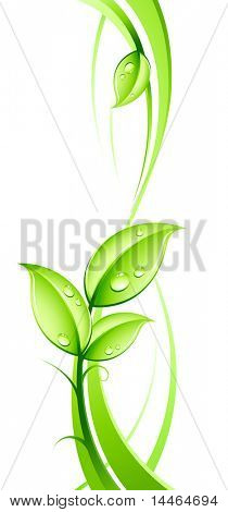 abstract background and leaves