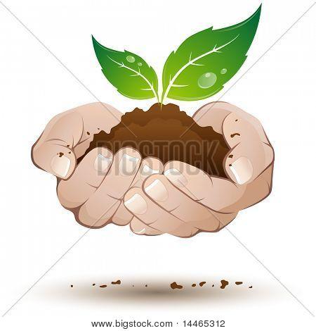 Mãos com folhas