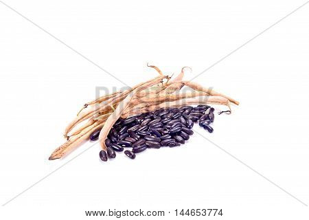 Vegetable plant a kidney bean is isolated on a white background