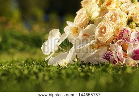 Closeup of flowers in a wedding bouquet, roses and orchids. Lying on the lawn in the setting sun.