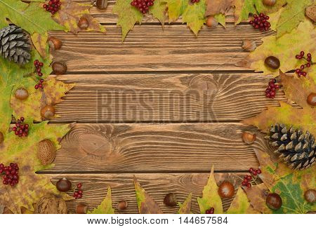 Autumn leaves on a brown background close up