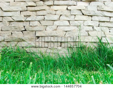 Background stone wall. Bottom juicy green grass. There is a place for your text.