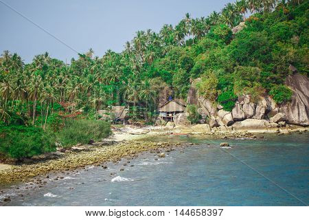 Rocky shore with green palms in Thailand