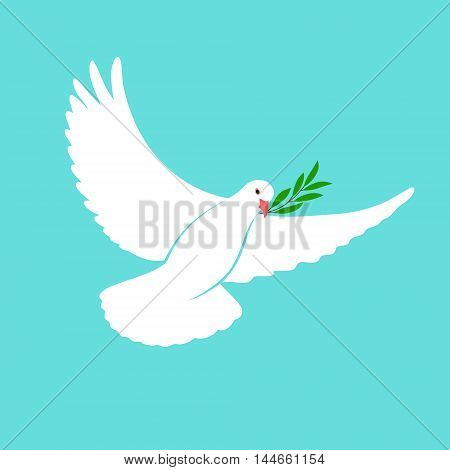 White Dove Vector Icon with Olive Branch. Peace Symbol. Pigeon Isolated Logo. White Flying Bird Emblem. Flat Dove Sign. International Day of Peace Poster Template with white dove, olive. 21 september
