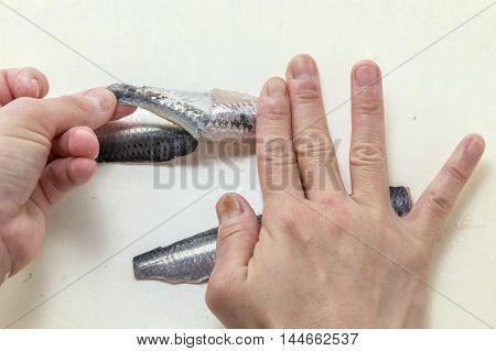 Skinning fresh raw sardine fish by hands in the kitchen