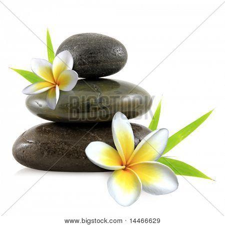 zen pebbles and flowers