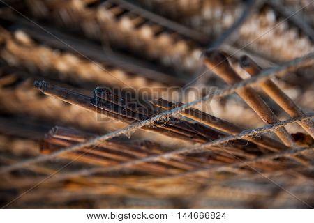 Sticks of cinnamon in workshop on river island at Madu Ganga - Sri Lanka