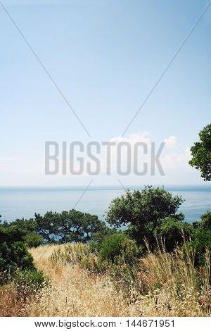 View on sea bay. Retro styled photo. Pine-trees and rocks. Aged photo. Lycian Way Walking - retro style photo. Antalya Province Turkey. Vertical format.