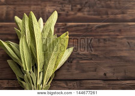 Fresh sage at left side of wooden table top view