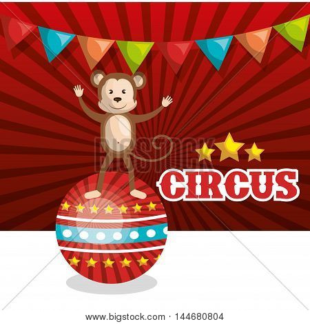 monkey circus animal show isolated icon vector illustration design