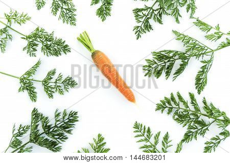 Composition of a carrot surrounded greens on white background