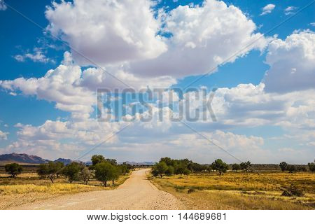 Travel to Namibia.The concept of exotic tourism. The blue sky flying white light clouds. Dirt road in the African steppe