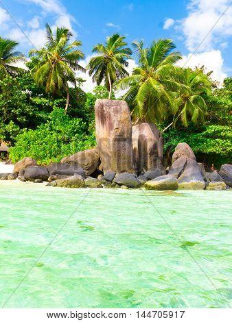 Stones Summer Shore