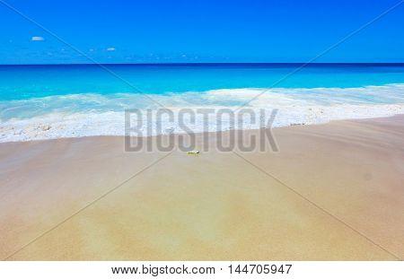 Storm Beach Surf