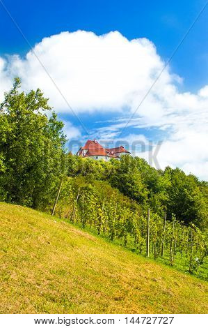 Countryside landscape with vineyard and old castle Veliki Tabor on hill, Zagorje, Croatia