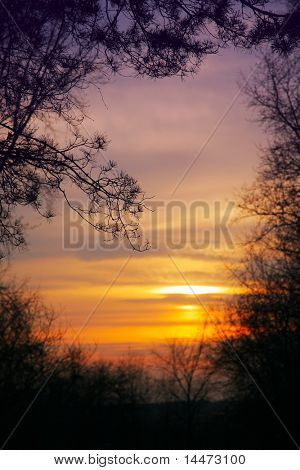 autumn landscape with droop sun