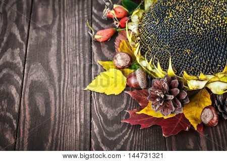 Autumn still life with sunflower pinecone dry red and yellow leaves acorn on old wooden board in rustic style