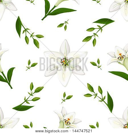 Floral vector pattern with lilies. Realistic style on a white background.