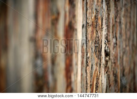 Old wooden timber texture