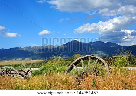 Abandoned and broken down wagons face the Absaroka Mountain Range in Paradise Valley Montana. Tall grass and weeds have overgrown the wooden structures.