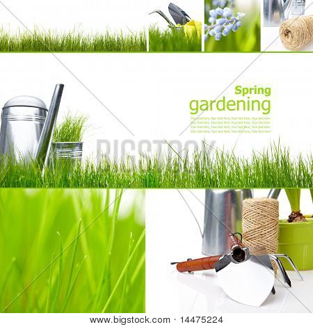 Collage garden and spring