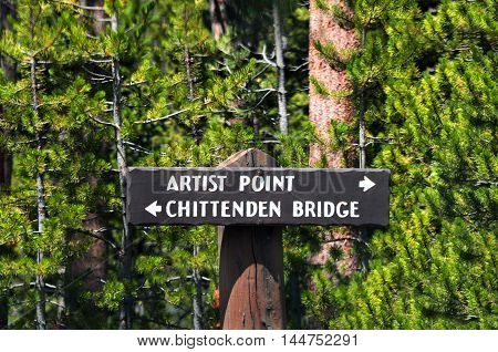 Rustic sign point the way to Artists Point and Chittenden Bridge in Yellowstone National Park.