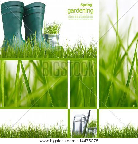 Collage garden and spring