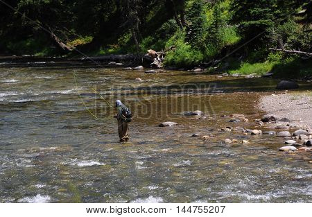 Man prepares line for flyfishing on the Gallatin River in Montana. River is shallow.