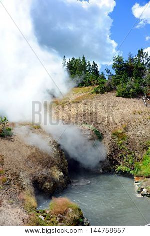 Steam boils from underground hot springs at Dragon's Mouth Spring in Yellowstone National Park.