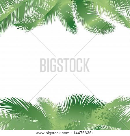 Floral background. Summer leaves flourish border. Plam leaf frame