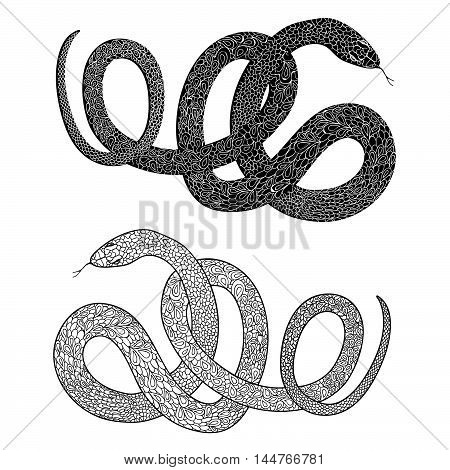 Snake set. Engraved hand drawn illustraction of ornamental decorated Swirl animal patterned line snakes.