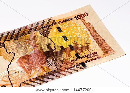 1000 Ugandan shillings bank note. Ugandan shilling is the national currency of Uganda