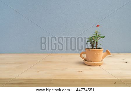 Euphorbia milii flower on terracotta flower pot watering shaped with copy space in left.