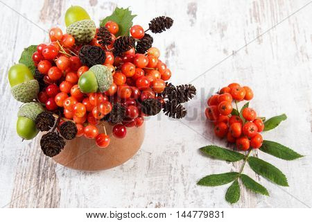 Bunch Of Red Viburnum With Alder Cone And Acorns On Rustic Wooden Background