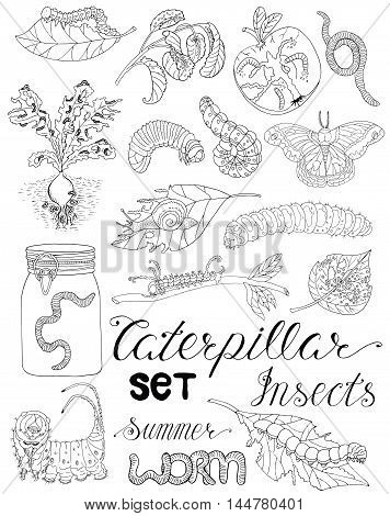 Hand drawn set with pests, larva, moth, worms and other invader insects isolated. Doodle line art illustration and graphic sketch, black and white vector with icons, gardening theme